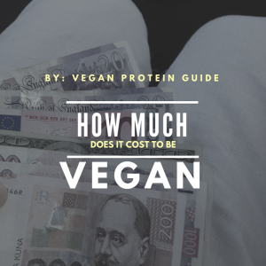 Ideas for a vegan on a budget