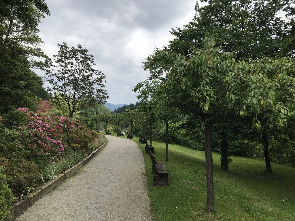 Mozirski gaj Slovenia 4